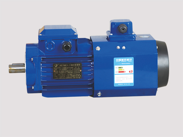 Square Aluminum-housing Variable Frequency Three Phase induction Motor
